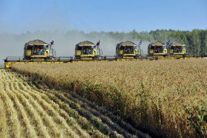 Код 11111000000: Отходы при уборке урожая зерновых и зернобобовых культур