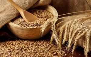 Код 11112001495: зерноотходы твердой пшеницы