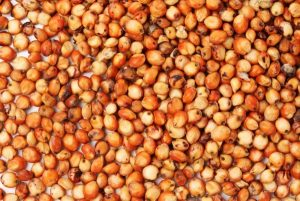 Код 11112008495: зерноотходы сорго