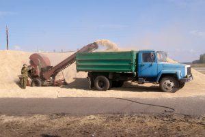 Код 11112011495 зерноотходы гречихи
