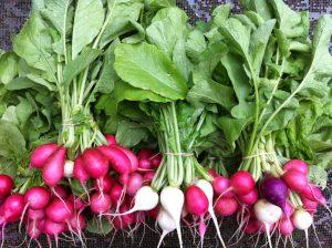 Код 11121001235: ботва от корнеплодов, другие подобные растительные остатки при выращивании овощей