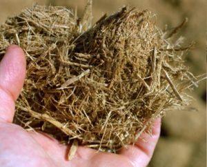 Код 11190000000: Прочие отходы растениеводства