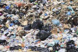 Обнаружена свалка медицинских отходов в Перми
