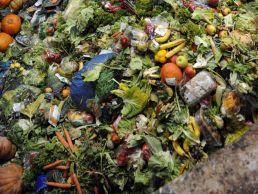 Пищевые отходы становятся топливом ускоренный метод